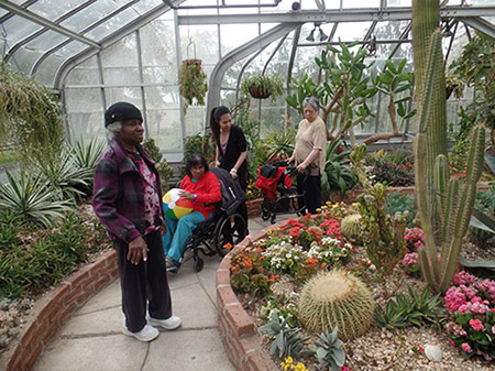 Rekai Centre residents and staff enjoying a tour of a Greenhouse